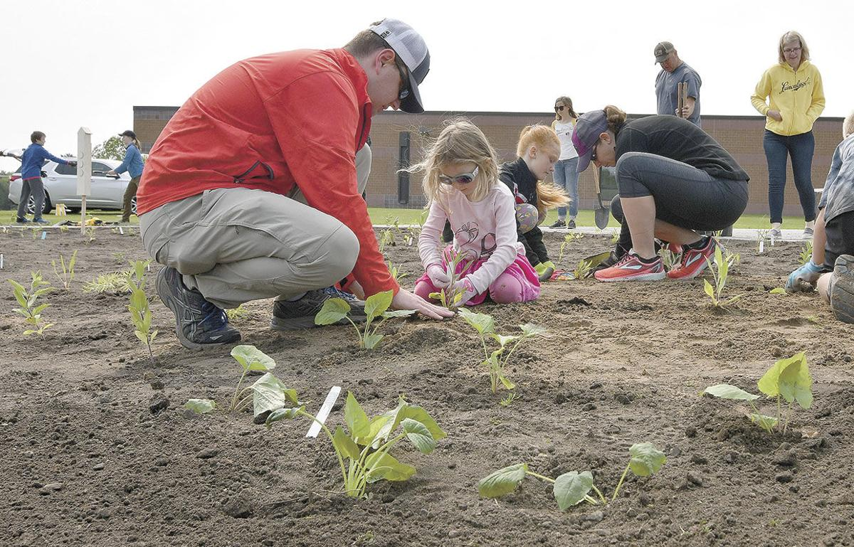 Planting for an outdoor classroom