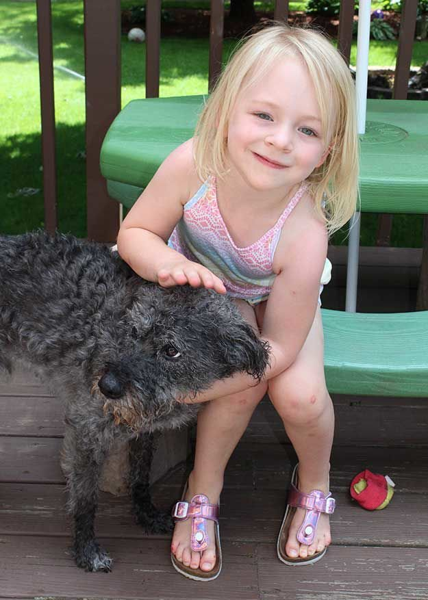 Medical alert dog will bring peace of mind to Lino Lakes family