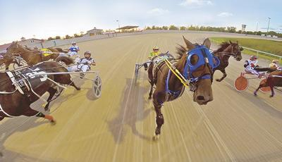 Running Aces begins harness racing season