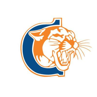Cougars lose two Region III games