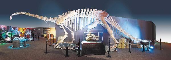 dinosunearthed2