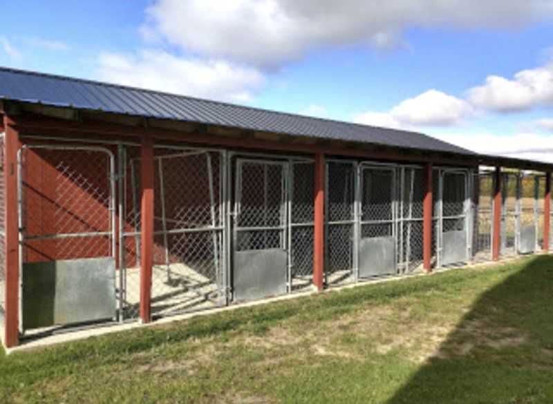 Malone shelter planning ahead for dogs, cats | Local News ... on the rifleman house, austin powers house, venom house, family matters house, thor house, pink panther house, the big valley house, jurassic park house, captain america house, the high chaparral house, predator house, green hornet house, the brady bunch house, phantom house, lord of the rings house, avengers house, pinocchio house, the sopranos house, toy story house,