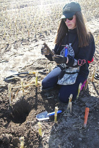 Under Our Feet: Chazy hosts metal detecting festival