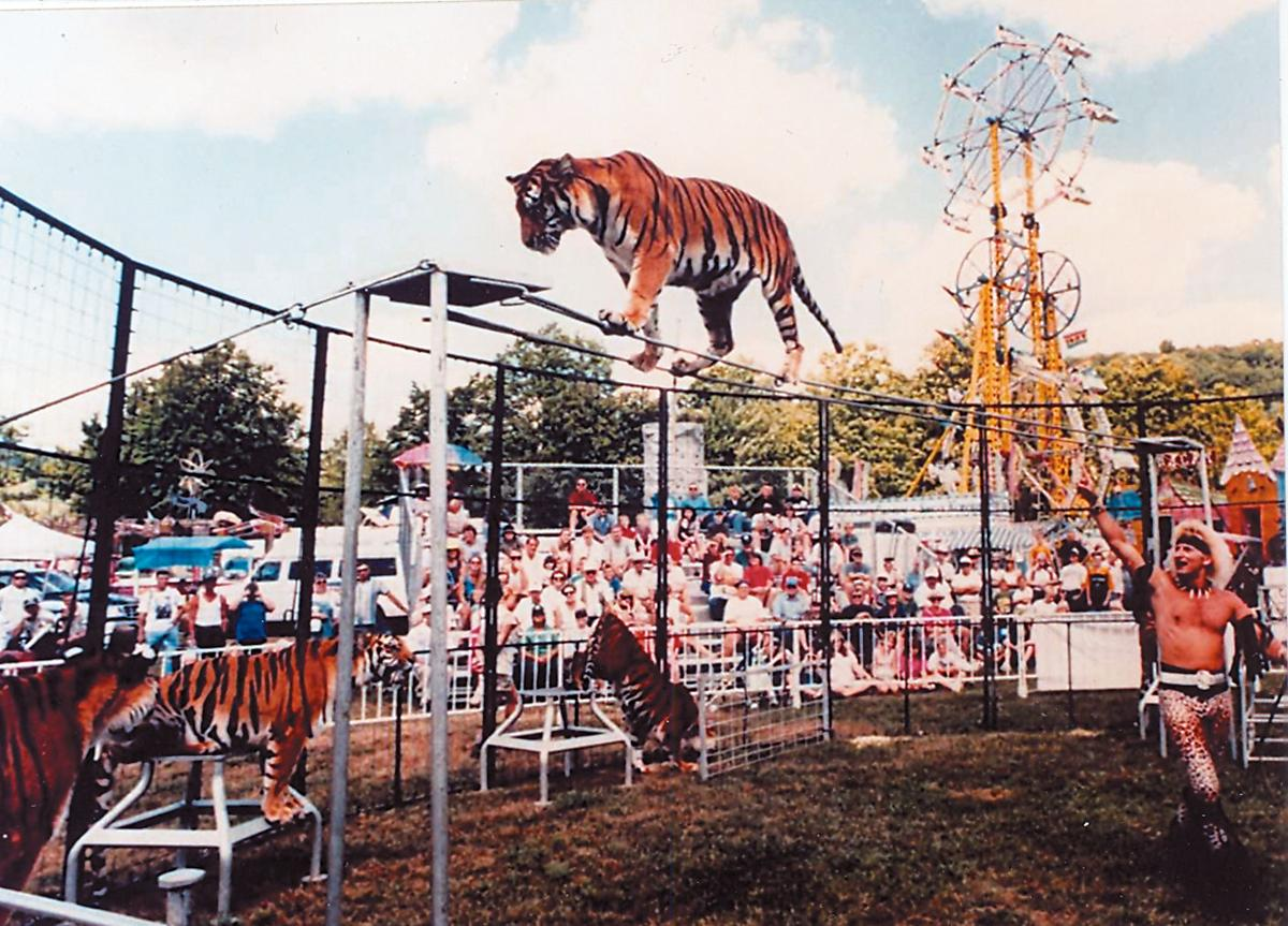 Affordable Clinton County Fair planned   Local News