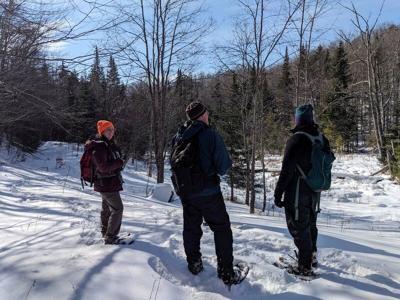 Adirondack Land Trust protects inholding in Vanderwhacker