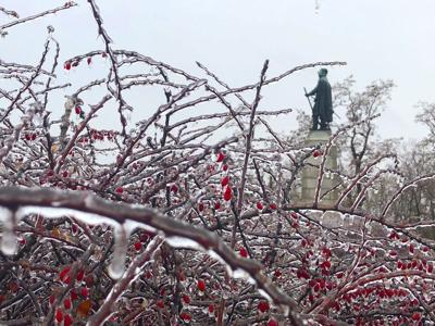 Ice storm kinder to North Country than expected