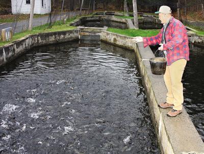Essex County Fish Hatchery revered   Local News   pressrepublican com