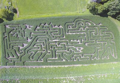 'Not Just Corn Maze' Slated for Woodbury at The Farm Site