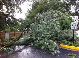 STORM AFTERMATH UPDATE
