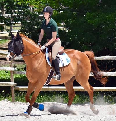 In Washington: HORSE to Host Spring Horse Parade Fundraiser