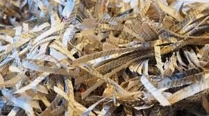 Watertown Lions Offer Shredding Event