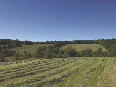 From Connecticut Farmland Trust: Area Farm Designated for Preservation