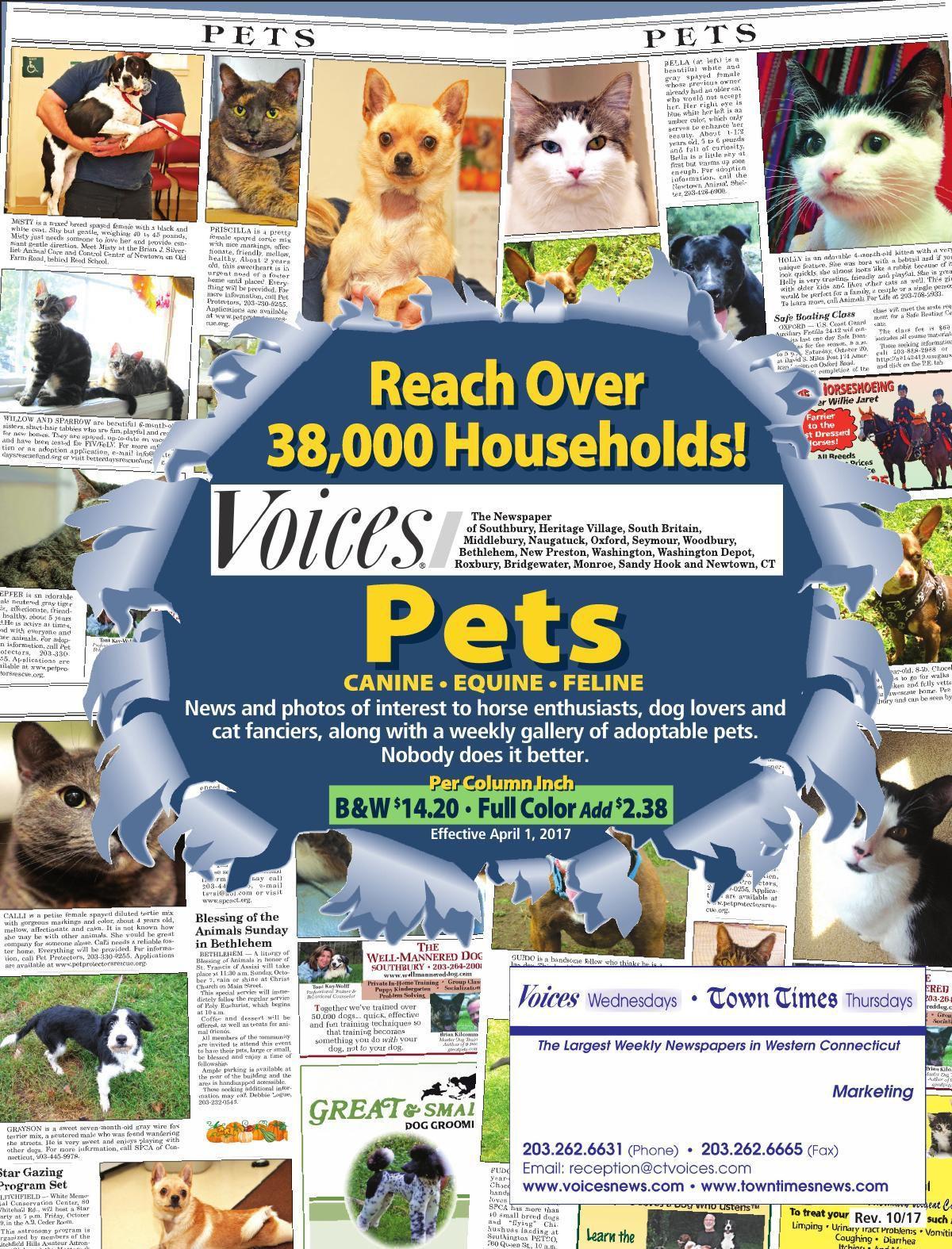 Pet Theme Pages