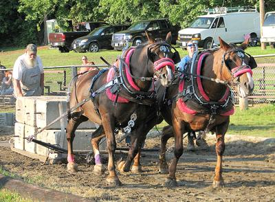 August 16 to 18: 68th Bridgewater Fair Planned
