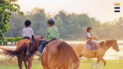 The U.S. Centers for Disease Control found that of all sports, equestrians suffered the highest rate of traumatic brain injury among any other type of recreation.