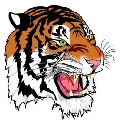 PSHS Tigers