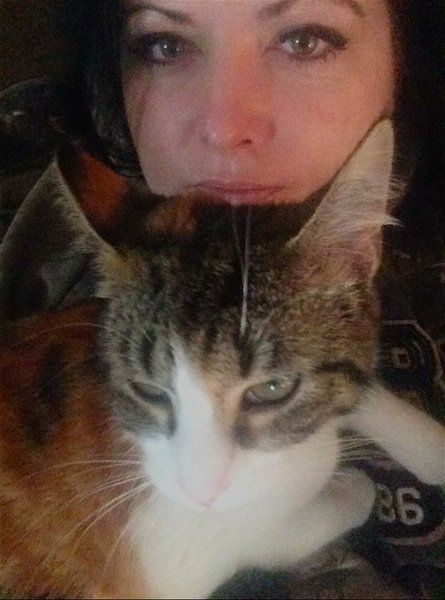 Momma Cat's 9 lives...
