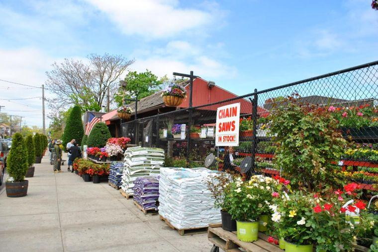 the keil brothers garden center and nursery at 210 11 48 ave is being eyed as the potential home for a 416 seat school - Bayside Garden Center