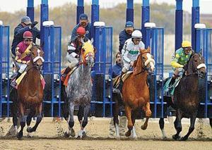 Scratch all horses at Aqueduct Race Track? 2