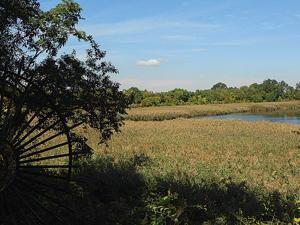 Ridgewood Reservoir meeting on June 30 1