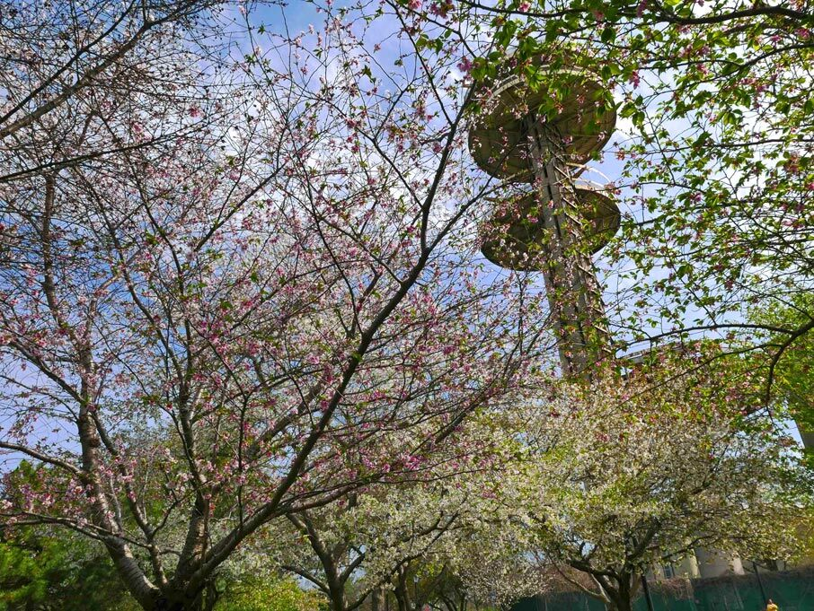 A spring nature walk for every interest 2