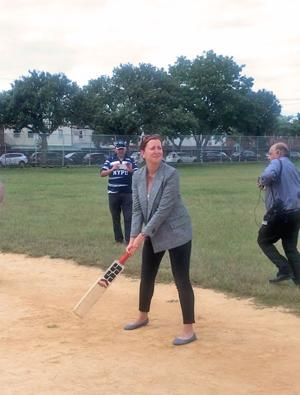 Cricket task force bill awaits Cuomo's OK 1