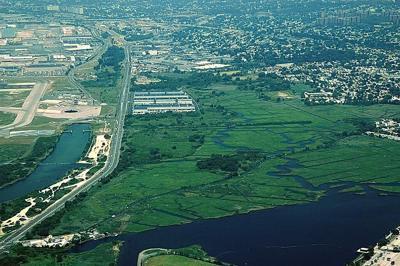 New report frames wetland preservation 1