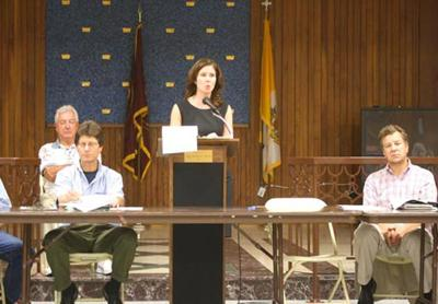 Participatory budgeting coming to District 30 1