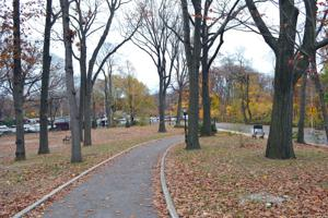 <p>Woodhaven residents worry that a lack of cameras in Forest Park, which Assemblyman Mike Miller secured funding for two years ago, might allow criminal activities to continue happening in the park.</p>