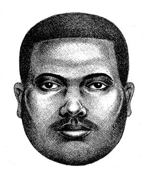 Police impersonators steal in west Queens 1
