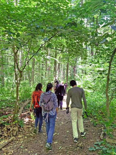 Nature trails you didn't know existed 1