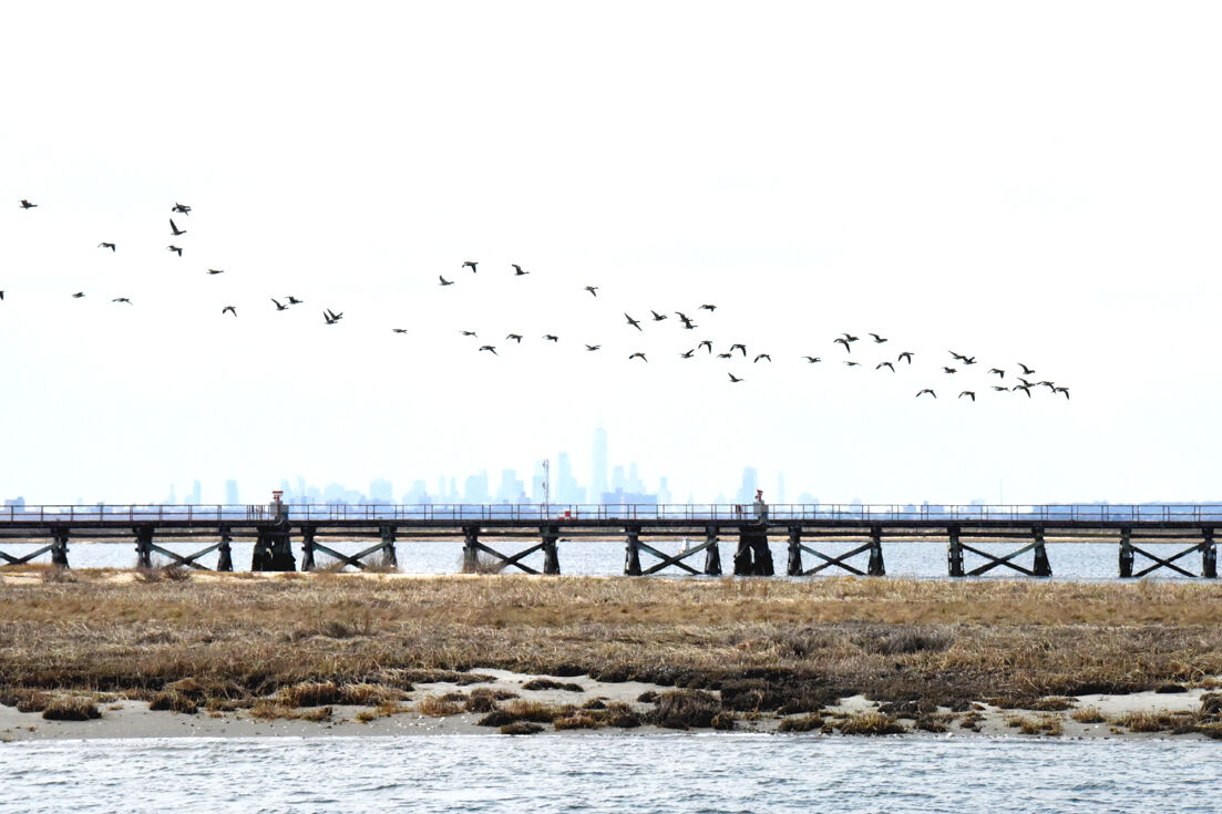 Pressuring Cuomo to sign dredging bill 1