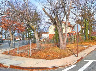 Avella: Vacant parcel should be transformed 1