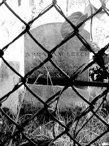 Mystery Cemetery Cleanup Has People Puzzled In Jamaica