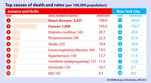 <p>The Jamaica-Hollis and Queens Village regions both face some health challenges in the latest community profiles released last week by the city's Department of Health and Mental Hygiene. Jamaica-Hollis has the highest infant mortality rate in the city.</p>
