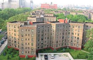 22 arrested in LIC narcotics takedown 1