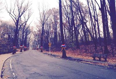 Part of Woodhaven's history rediscovered 1