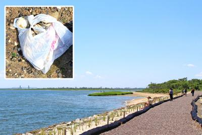 Poachers targeted in Jamaica Bay 1