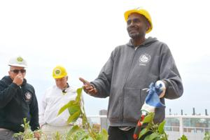 Hunters Point South gets GrowNYC urban farm 3