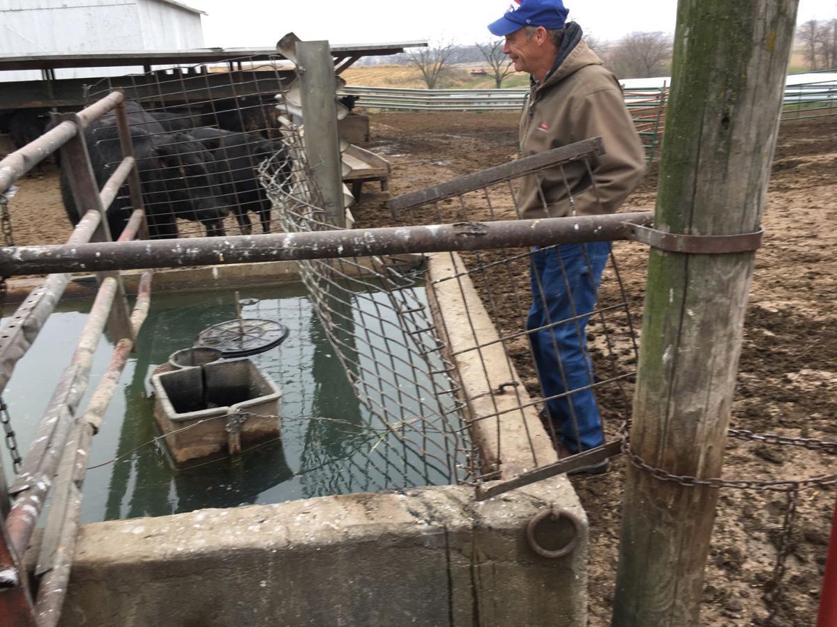 cattle waterer