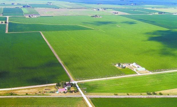 Proposed Orascom fertlizier plant site