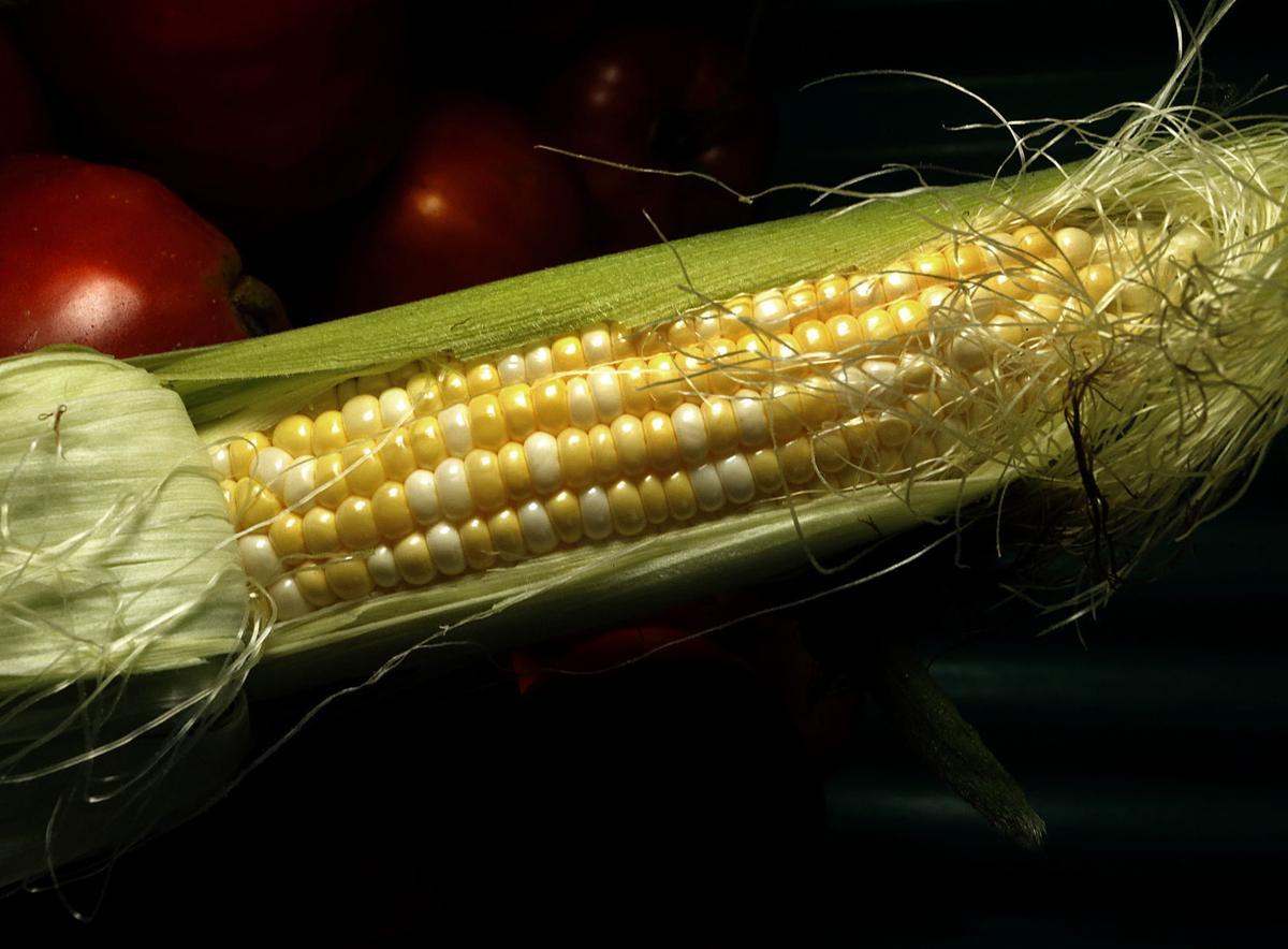 Magnolia Crest Farm back in sweet corn biz this summer | Food
