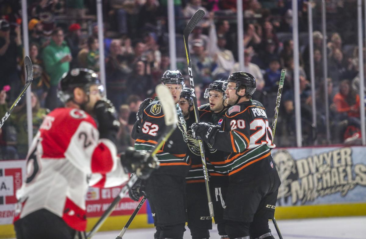 Mallards Win Emotional Finale Quad City Storm Hockey Qctimes Com