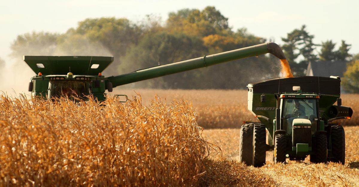 100915-harvest4