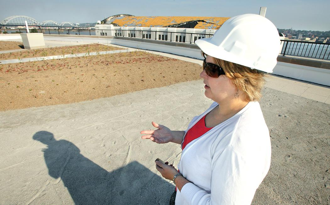 McKesson project shows off green roof