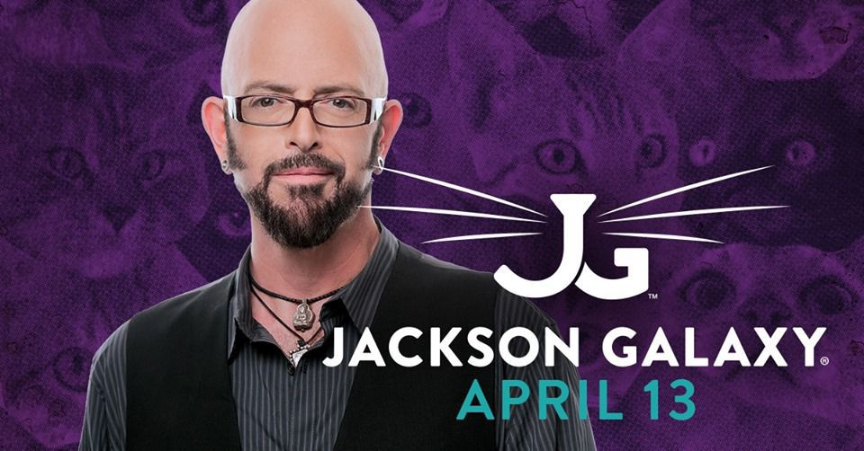 Best of the week 9 things to do this week for fun in the for Jackson galaxy cat mojo