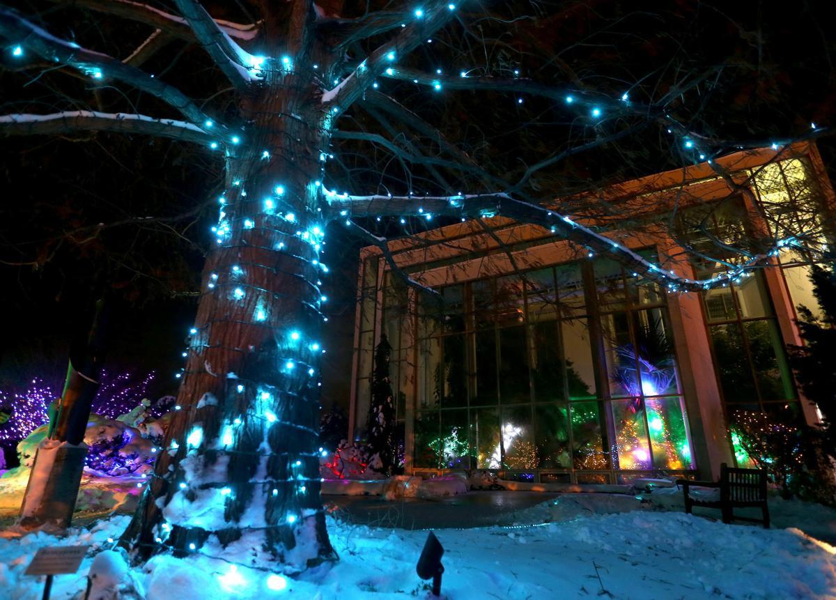 112718-botanical-lights-020