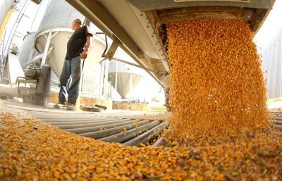 092518-harvest-001