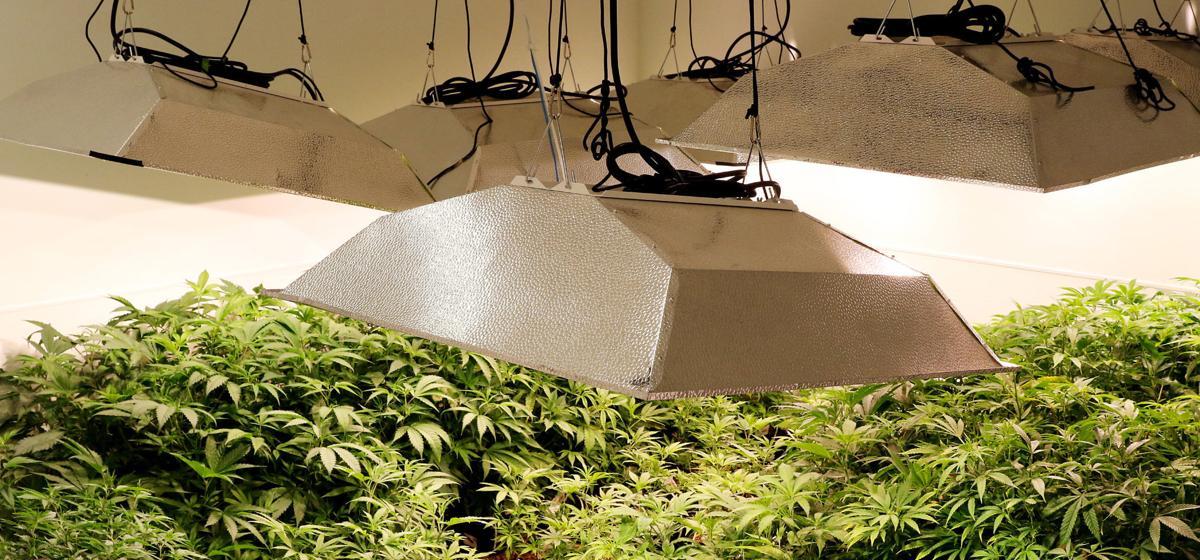 091216-In-Grow-Farms-013