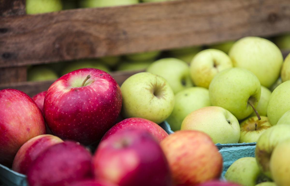 Classes range from growing apples to making trough gardens | Home ...